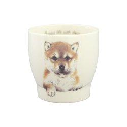 画像1: わんコレ 湯のみ 【S13】柴犬